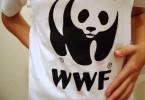 umweltschutzorganisationen nachhaltigkeit