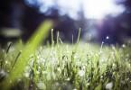 nachhaltigkeit definition csr nachhaltig sein