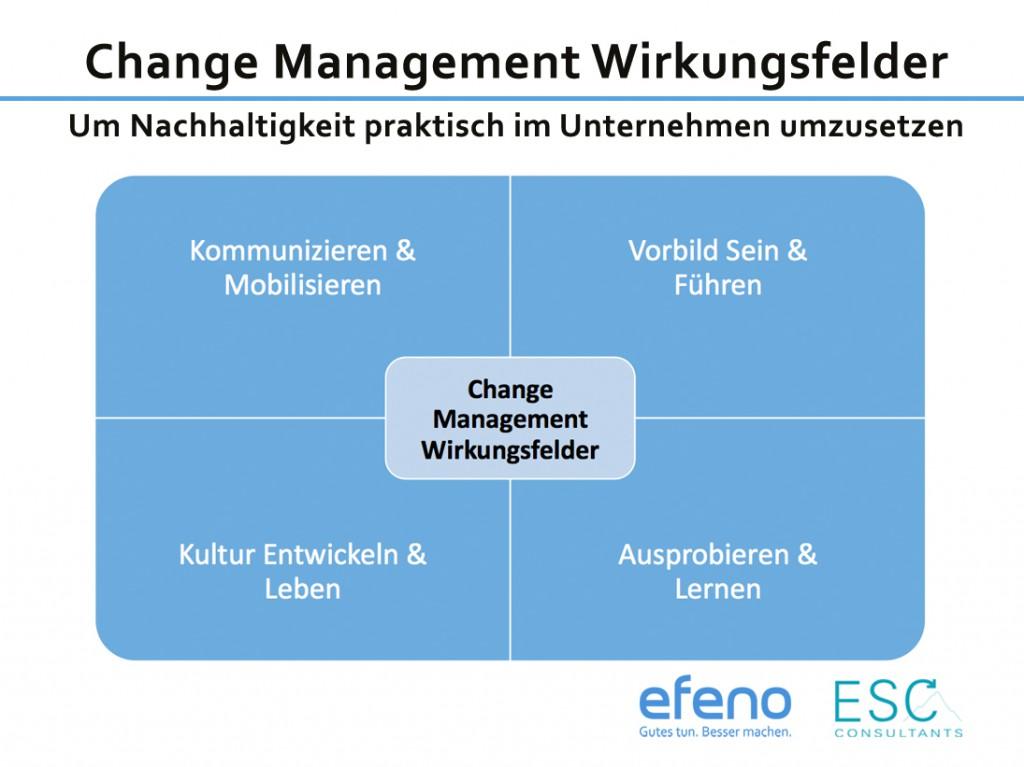 Handbuch Nachhaltigkeit Change Management Umsetzung Unternehmen