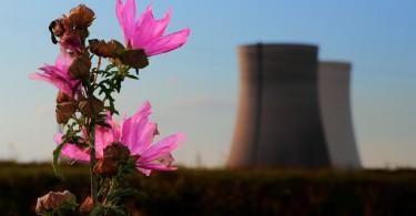 Greenwashing Atomkraftwerk Natur misstilli Flickr