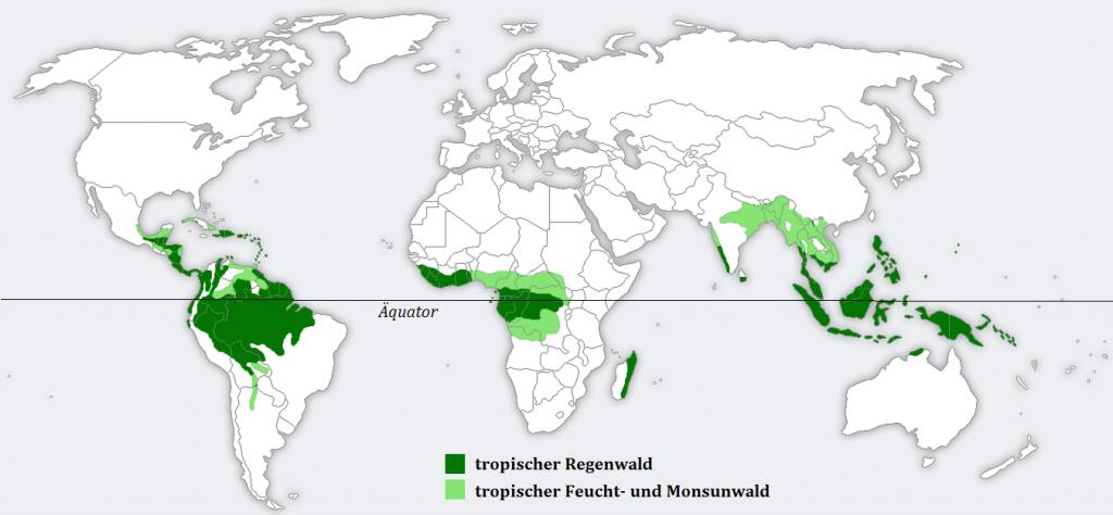 Weltkarte Tropischer Regenwald Verbreitung nachhaltig sein