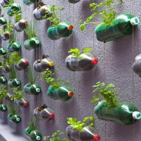 Wand Garten Plastikflaschen upcycling