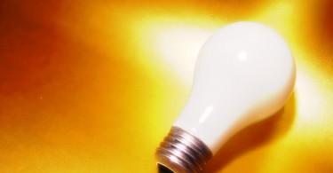 Gruene Startups nachhaltigkeit
