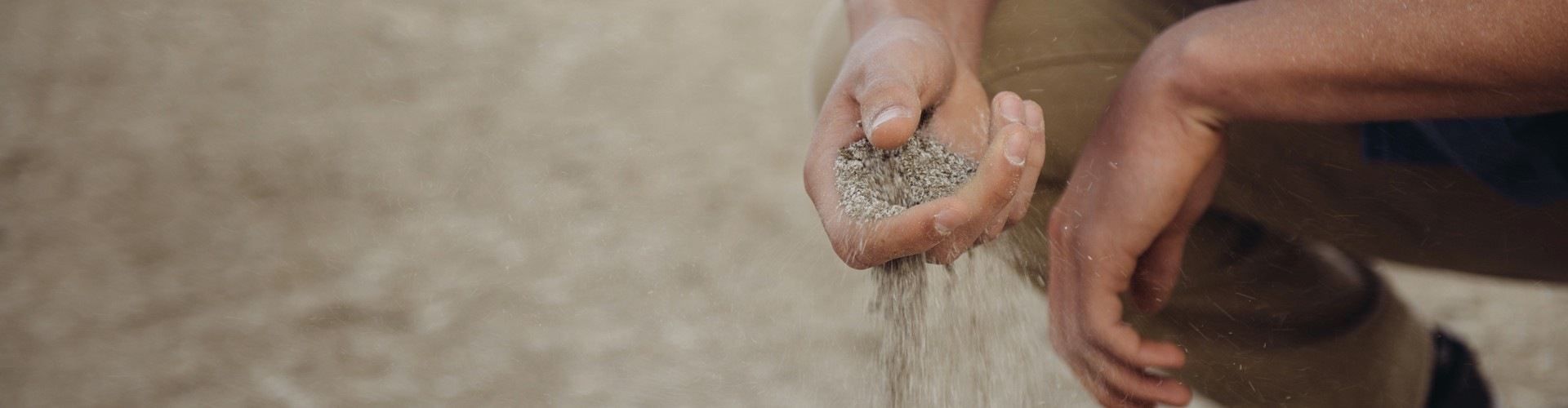 Nachhaltigkeit Erde Boden Forrest Cavale