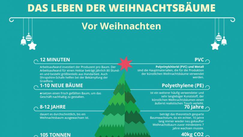 Weihnachtsbaum Kaufen Echt.öko Vergleich Plastik Christbaum Oder Echte Tanne